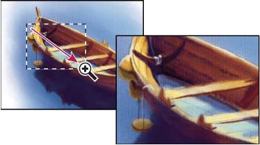 Come usare lo strumento zoom – Photoshop